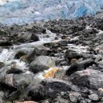 Zool gletsjer